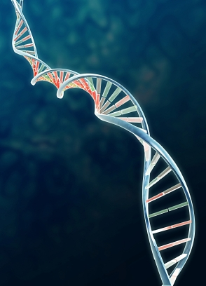 an analysis of dna deoxyribonucleic acid and forensics View dna from human reso 215 at ashford university the collection and analysis of dna, or deoxyribonucleic acid, samples has revolutionized forensic investigations.